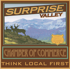 Surprise Valey Chamber of Commerce logo