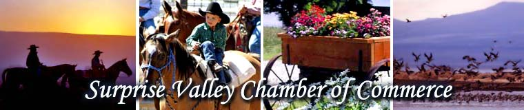 Surprise Valley Chamber of Commerce
